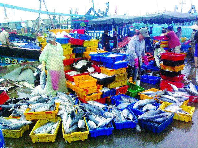 hành trình du lịch phú quốc: chợ dương đông